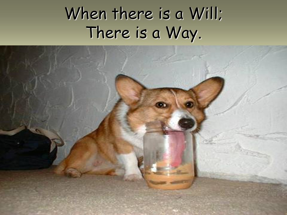 When there is a Will; There is a Way.