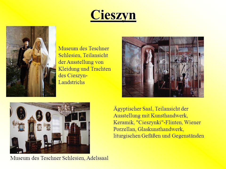 Cieszyn Ägyptischer Saal, Teilansicht der Ausstellung mit Kunsthandwerk, Keramik,