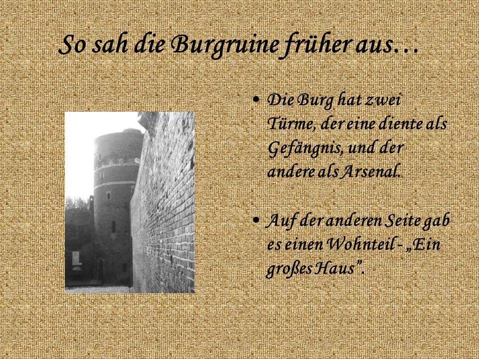 So sah die Burgruine früher aus… Die Burg hat zwei Türme, der eine diente als Gefängnis, und der andere als Arsenal.