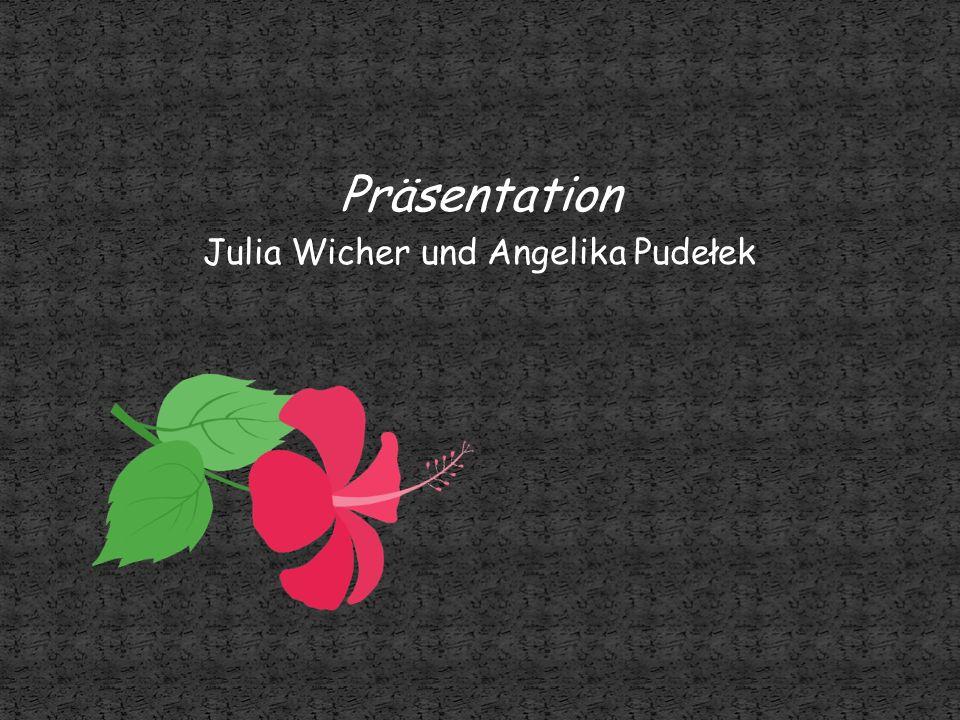 Präsentation Julia Wicher und Angelika Pudełek