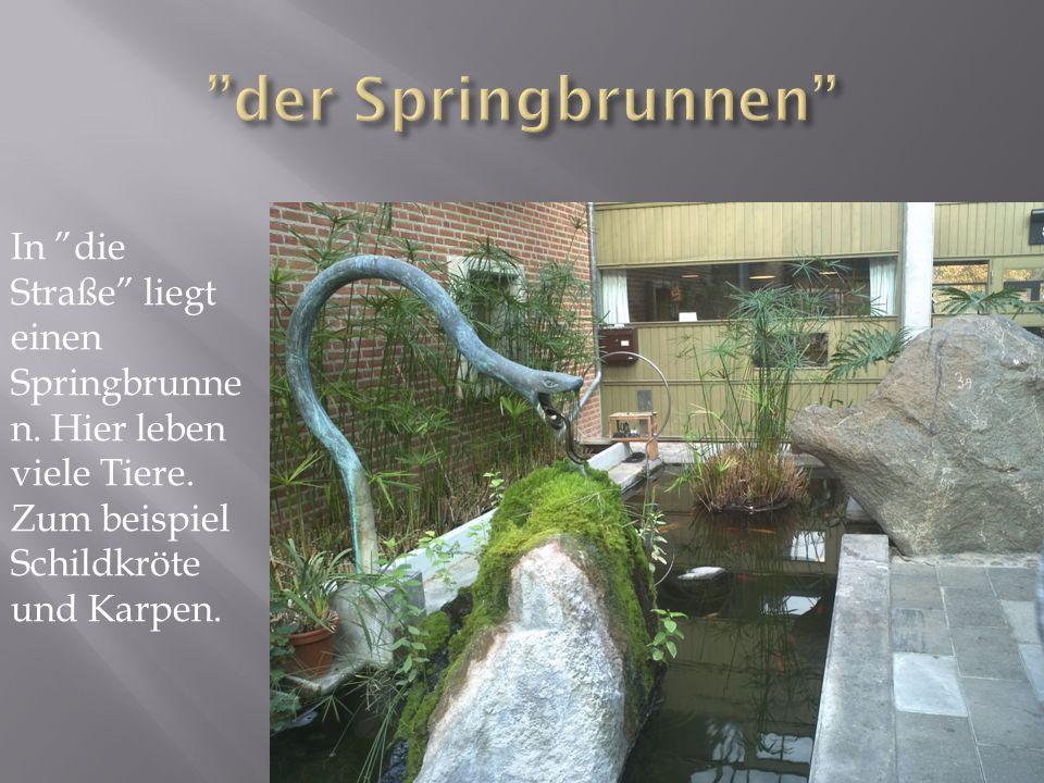 In die Straße liegt einen Springbrunne n. Hier leben viele Tiere.
