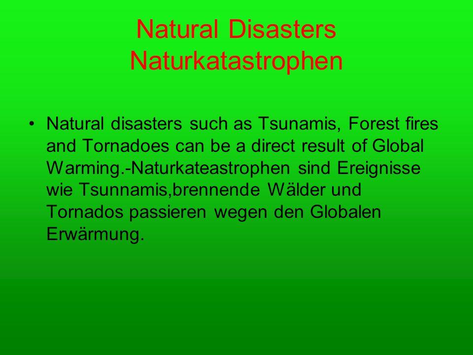 Natural Disasters Naturkatastrophen Natural disasters such as Tsunamis, Forest fires and Tornadoes can be a direct result of Global Warming.-Naturkateastrophen sind Ereignisse wie Tsunnamis,brennende Wälder und Tornados passieren wegen den Globalen Erwärmung.