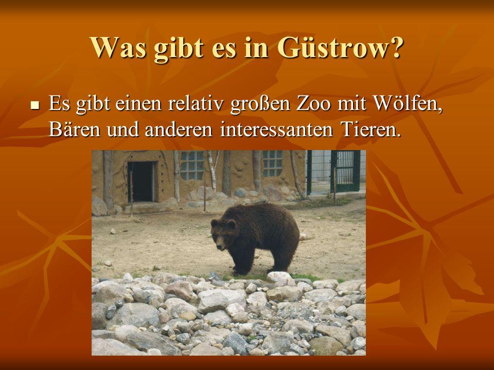 Was gibt es in Güstrow? Es gibt einen relativ großen Zoo mit Wölfen, Bären und anderen interessanten Tieren. Es gibt einen relativ großen Zoo mit Wölf