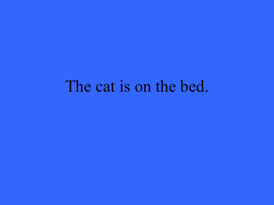 The cat is on the bed.