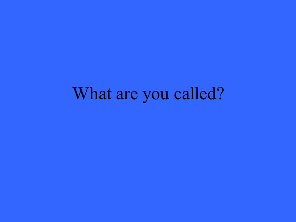 What are you called?