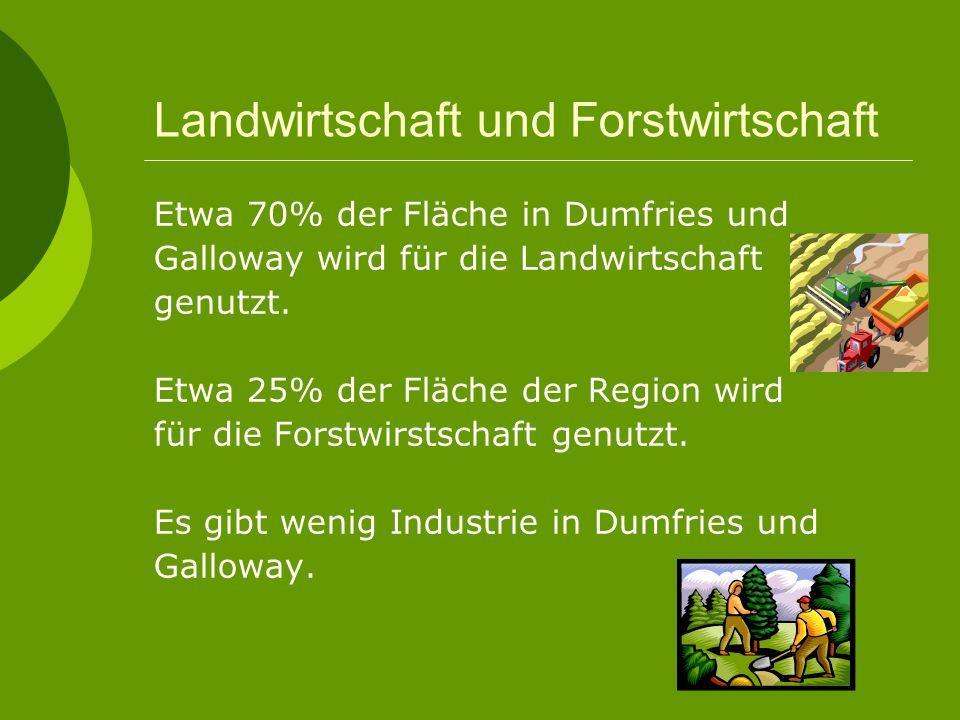 Landwirtschaft und Forstwirtschaft Etwa 70% der Fläche in Dumfries und Galloway wird für die Landwirtschaft genutzt.