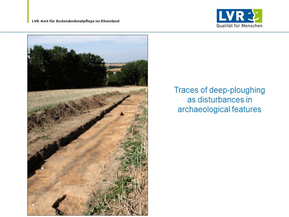 LVR-Amt für Bodendenkmalpflege im Rheinland Traces of deep-ploughing as disturbances in archaeological features