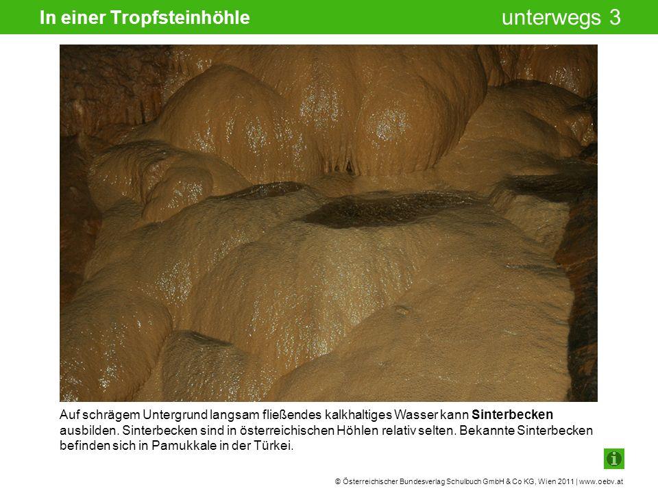 © Österreichischer Bundesverlag Schulbuch GmbH & Co KG, Wien 2011 | www.oebv.at unterwegs 3 In einer Tropfsteinhöhle Auf schrägem Untergrund langsam fließendes kalkhaltiges Wasser kann Sinterbecken ausbilden.