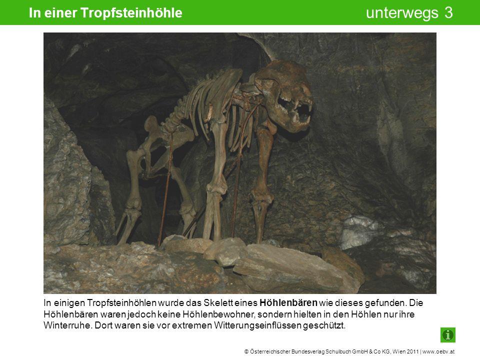 © Österreichischer Bundesverlag Schulbuch GmbH & Co KG, Wien 2011 | www.oebv.at unterwegs 3 In einer Tropfsteinhöhle In einigen Tropfsteinhöhlen wurde