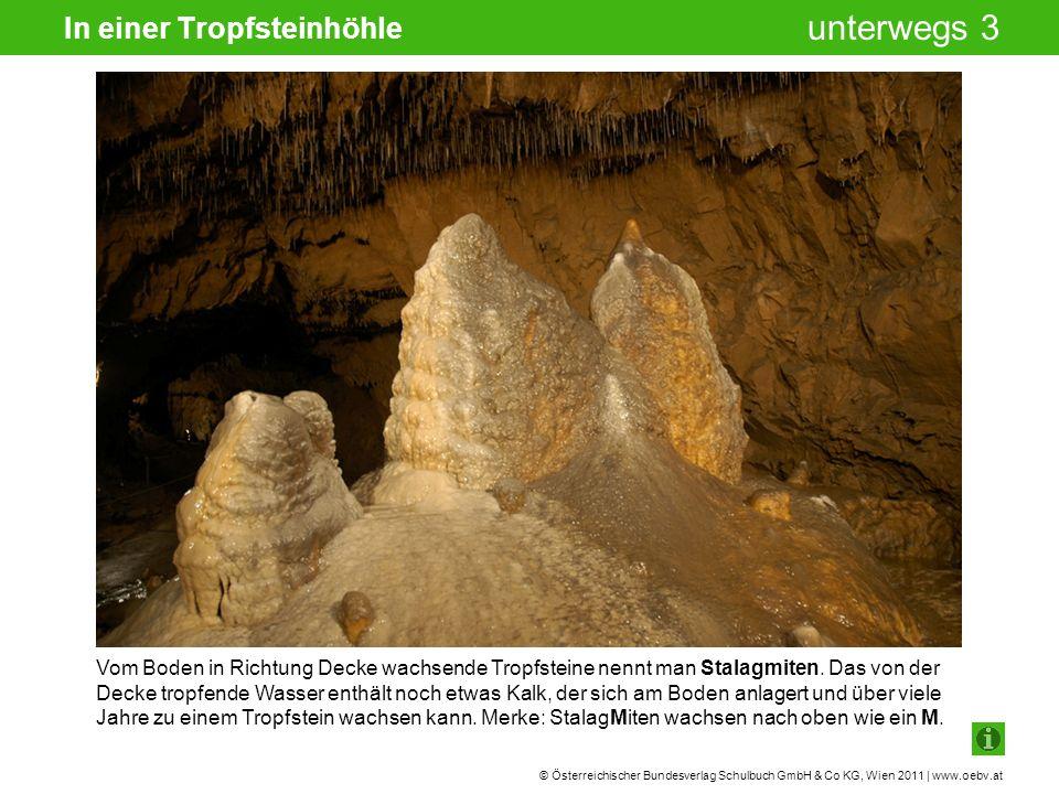 © Österreichischer Bundesverlag Schulbuch GmbH & Co KG, Wien 2011 | www.oebv.at unterwegs 3 In einer Tropfsteinhöhle Vom Boden in Richtung Decke wachsende Tropfsteine nennt man Stalagmiten.