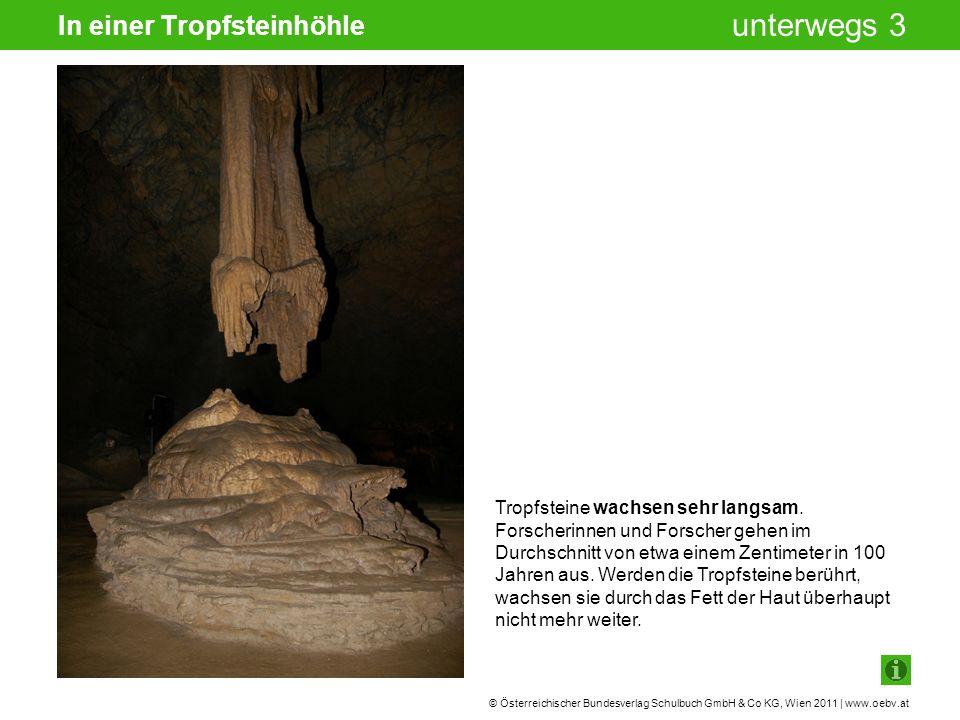 © Österreichischer Bundesverlag Schulbuch GmbH & Co KG, Wien 2011 | www.oebv.at unterwegs 3 In einer Tropfsteinhöhle Tropfsteine wachsen sehr langsam.
