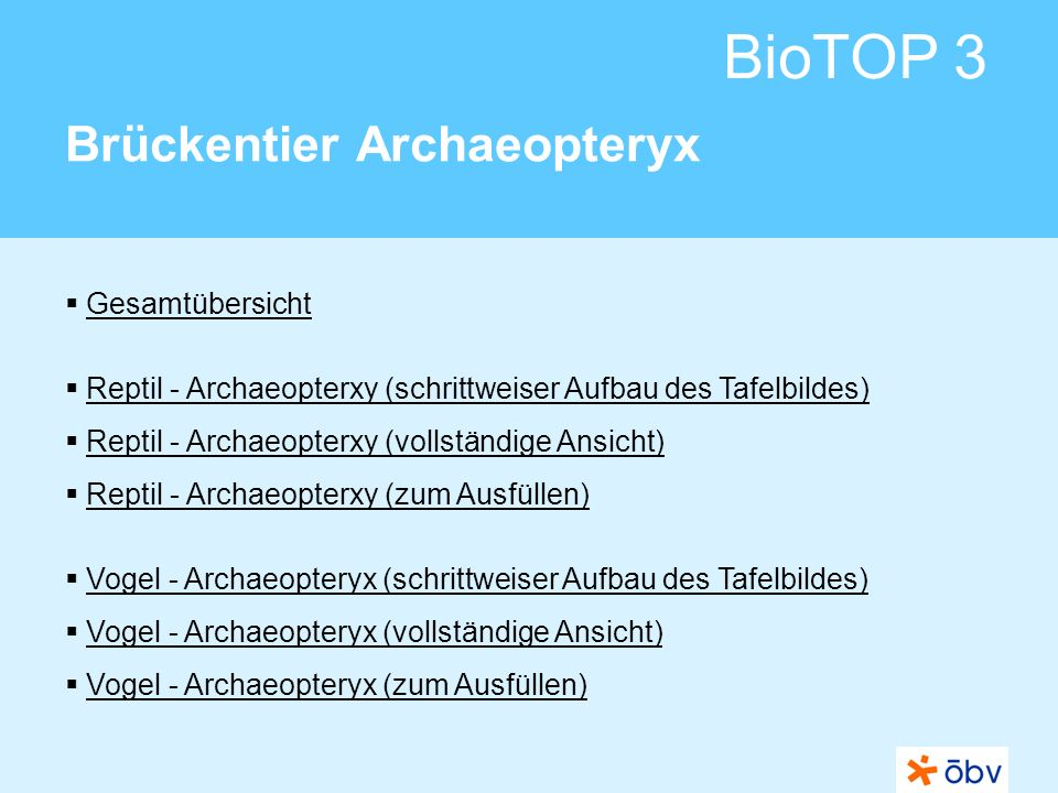 © Österreichischer Bundesverlag Schulbuch GmbH & Co KG | www.oebv.at BioTOP 3 Brückentier Archaeopteryx Reptilien Vögel Archaeopteryx zu den gemeinsamen Merkmalen zu den gemeinsamen Merkmalen
