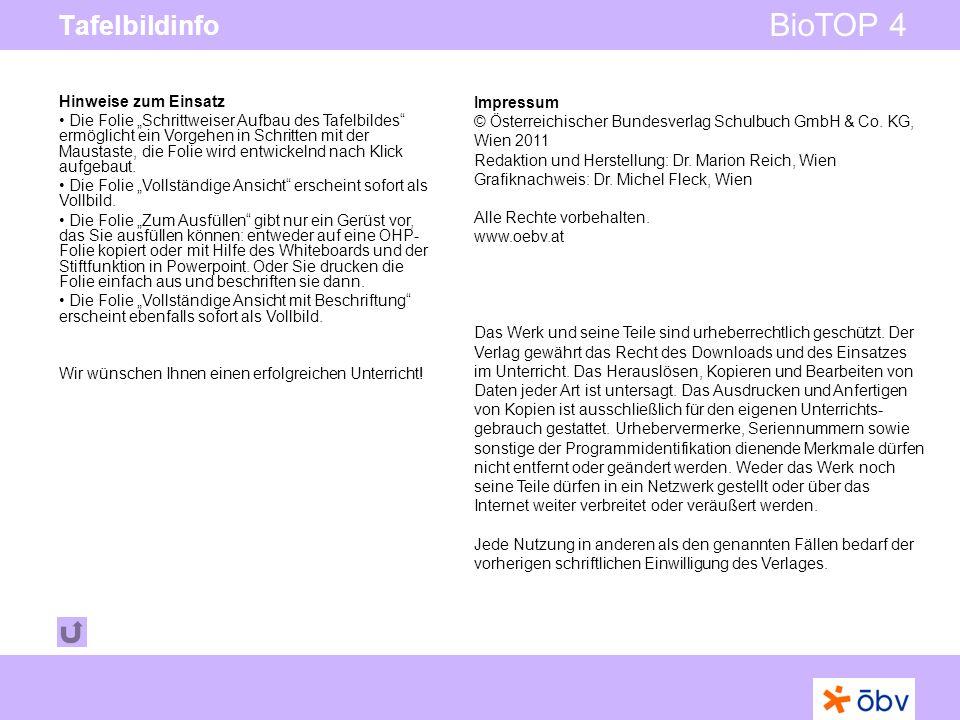 © Österreichischer Bundesverlag Schulbuch GmbH & Co KG   www.oebv.at BioTOP 4 Tafelbildinfo Impressum © Österreichischer Bundesverlag Schulbuch GmbH & Co.