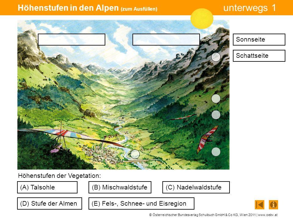 © Österreichischer Bundesverlag Schulbuch GmbH & Co KG, Wien 2011 | www.oebv.at unterwegs 1 Höhenstufen in den Alpen (Lösung) (A) Talsohle (D) Stufe der Almen (C) Nadelwaldstufe(B) Mischwaldstufe (E) Fels-, Schnee- und Eisregion Höhenstufen der Vegetation: SonnseiteSchattseite A B C D E
