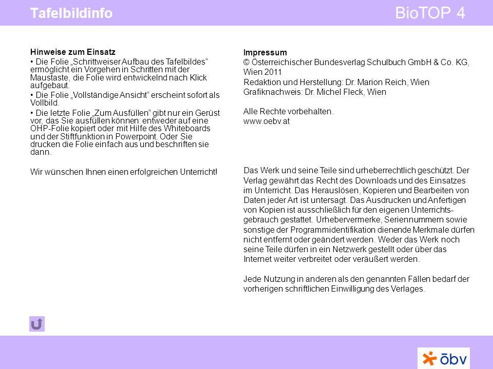© Österreichischer Bundesverlag Schulbuch GmbH & Co KG | www.oebv.at BioTOP 4 Tafelbildinfo Impressum © Österreichischer Bundesverlag Schulbuch GmbH &