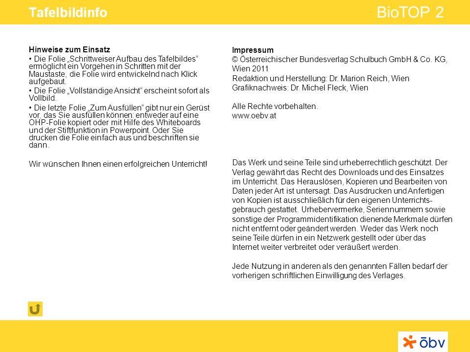 © Österreichischer Bundesverlag Schulbuch GmbH & Co KG | www.oebv.at BioTOP 2 Tafelbildinfo Hinweise zum Einsatz Die Folie Schrittweiser Aufbau des Tafelbildes ermöglicht ein Vorgehen in Schritten mit der Maustaste, die Folie wird entwickelnd nach Klick aufgebaut.