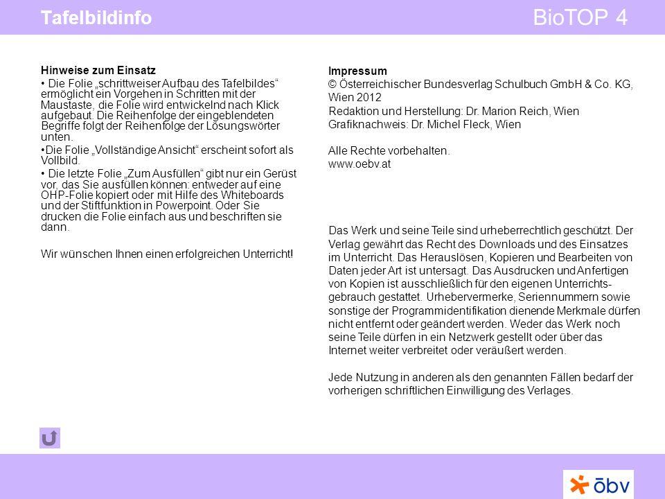 © Österreichischer Bundesverlag Schulbuch GmbH & Co KG   www.oebv.at BioTOP 4 Tafelbildinfo Impressum © Österreichischer Bundesverlag Schulbuch GmbH &