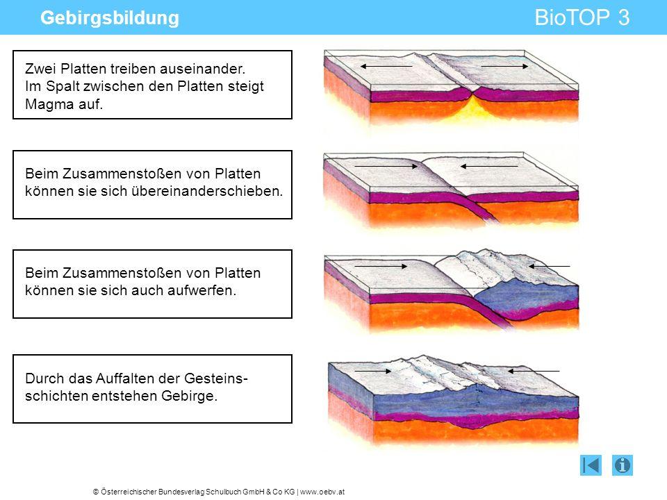 © Österreichischer Bundesverlag Schulbuch GmbH & Co KG | www.oebv.at BioTOP 3 Gebirgsbildung Zwei Platten treiben auseinander. Im Spalt zwischen den P