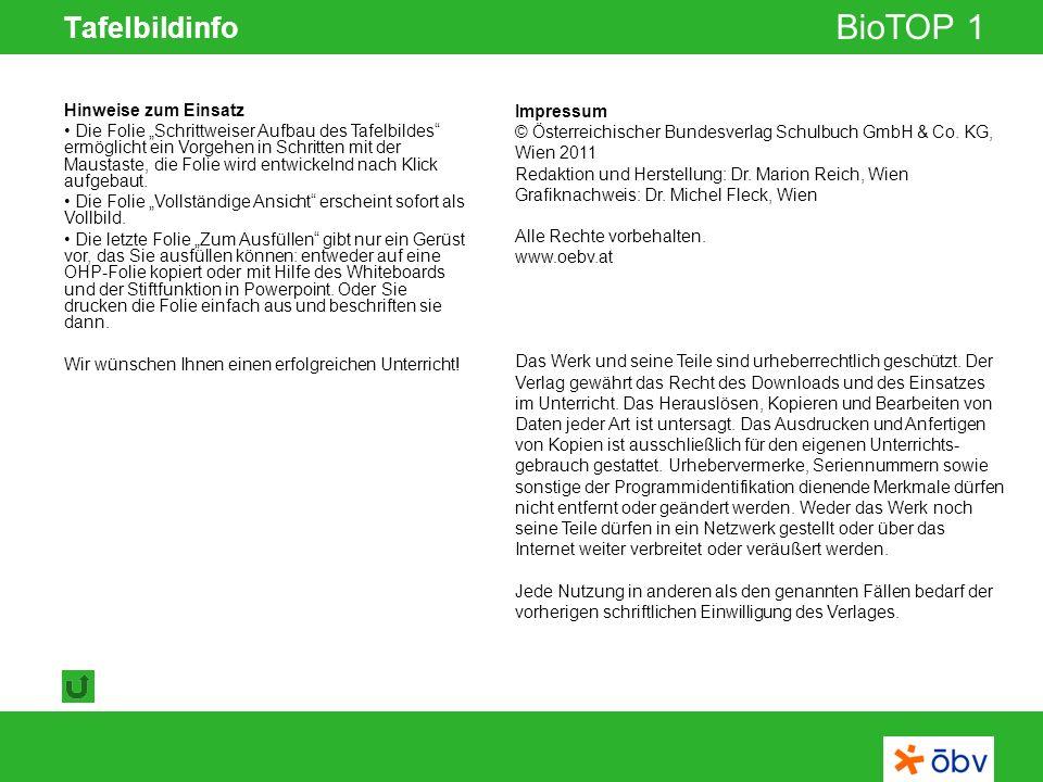 © Österreichischer Bundesverlag Schulbuch GmbH & Co KG   www.oebv.at BioTOP 1 Tafelbildinfo Impressum © Österreichischer Bundesverlag Schulbuch GmbH &
