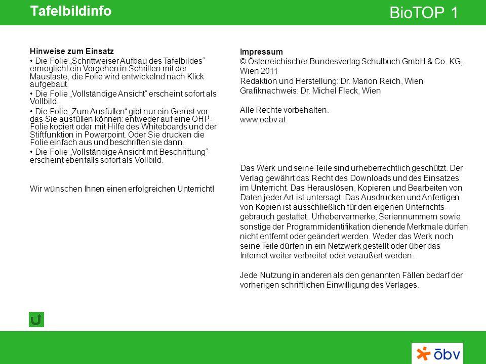 © Österreichischer Bundesverlag Schulbuch GmbH & Co KG | www.oebv.at BioTOP 1 Tafelbildinfo Impressum Das Werk und seine Teile sind urheberrechtlich geschützt.