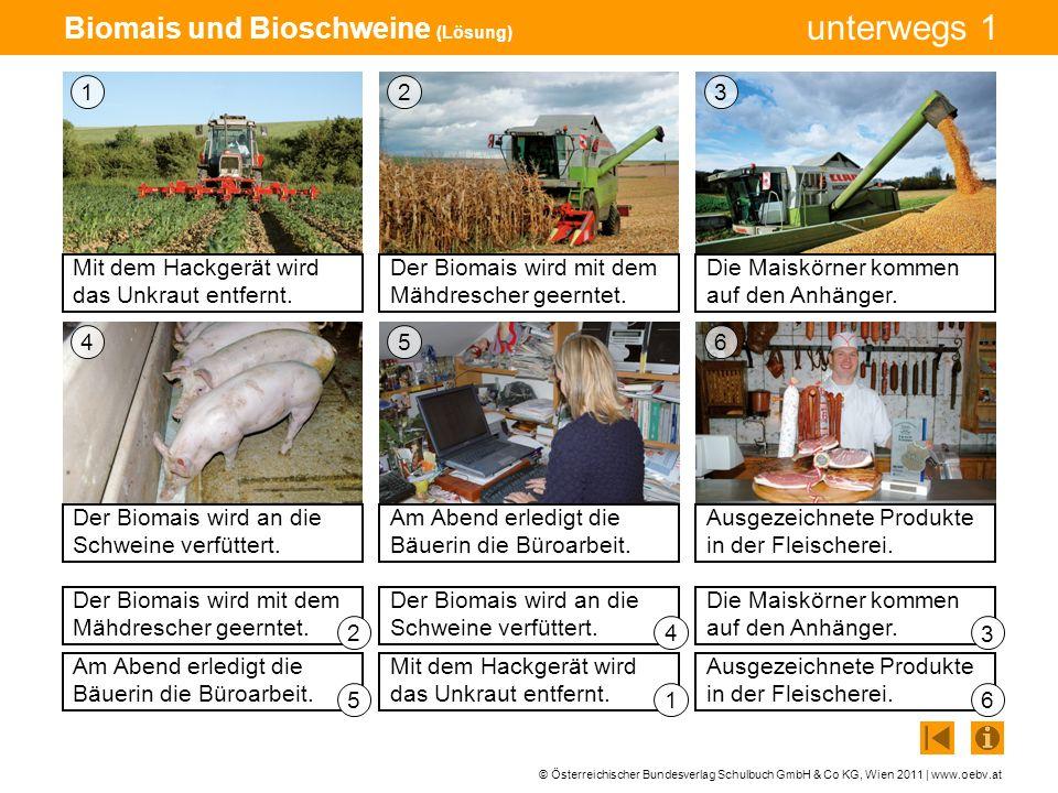 © Österreichischer Bundesverlag Schulbuch GmbH & Co KG, Wien 2011 | www.oebv.at unterwegs 1 Biomais und Bioschweine (Lösung) Mit dem Hackgerät wird da