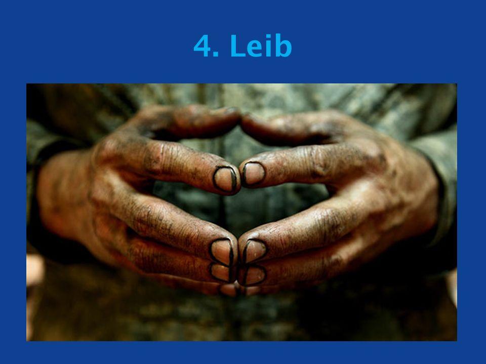4. Leib