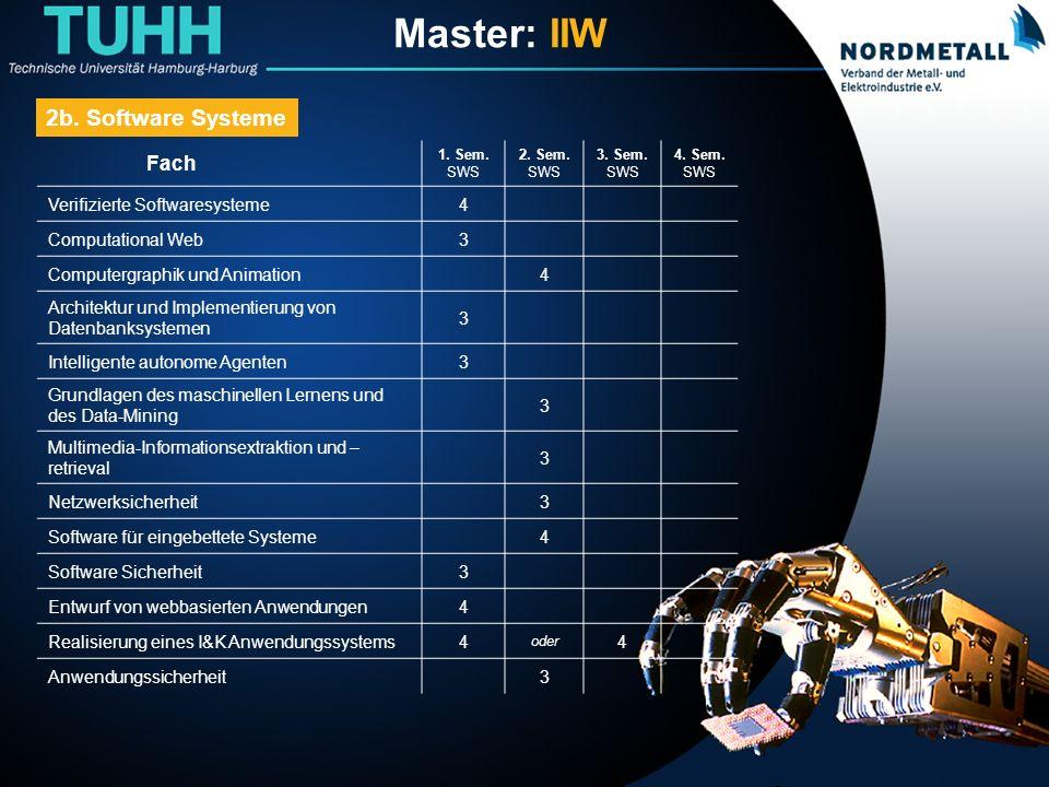 Master: Informatik-Ingenieurwesen (13) Fach 1.Sem.
