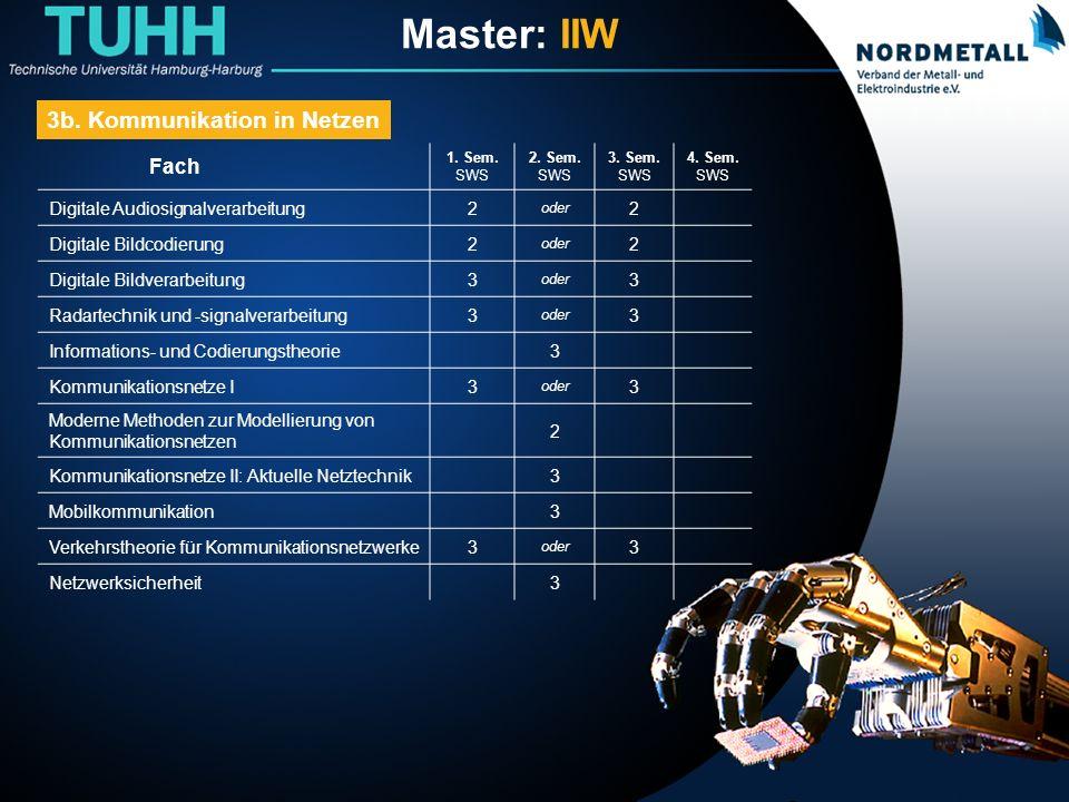 Master: Informatik-Ingenieurwesen (19) Fach 1.Sem.