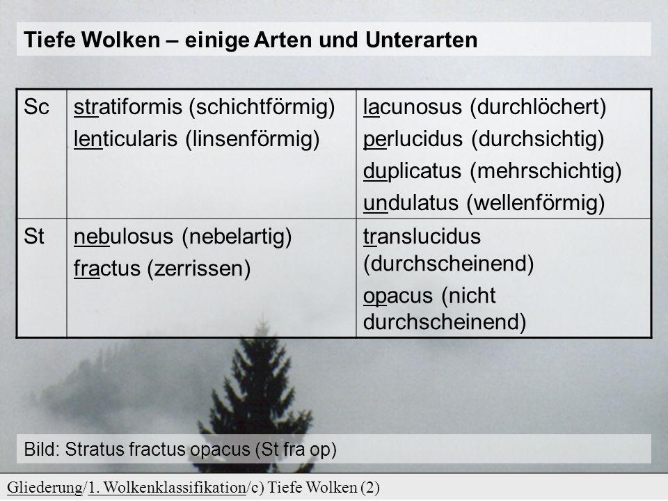 c) Tiefe Wolken GliederungGliederung/1. Wolkenklassifikation/c) Tiefe Wolken (1)1. Wolkenklassifikation Stratocumulus Stratus