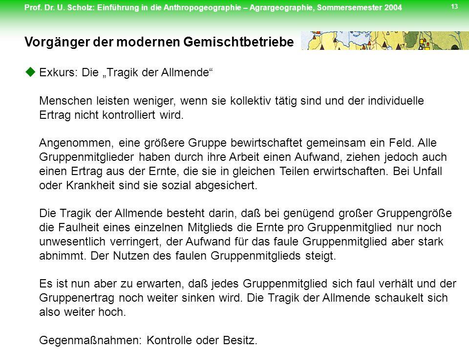Prof. Dr. U. Scholz: Einführung in die Anthropogeographie – Agrargeographie, Sommersemester 2004 13 Exkurs: Die Tragik der Allmende Menschen leisten w