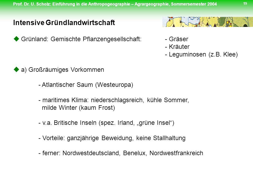 Prof. Dr. U. Scholz: Einführung in die Anthropogeographie – Agrargeographie, Sommersemester 2004 19 Grünland: Gemischte Pflanzengesellschaft:- Gräser