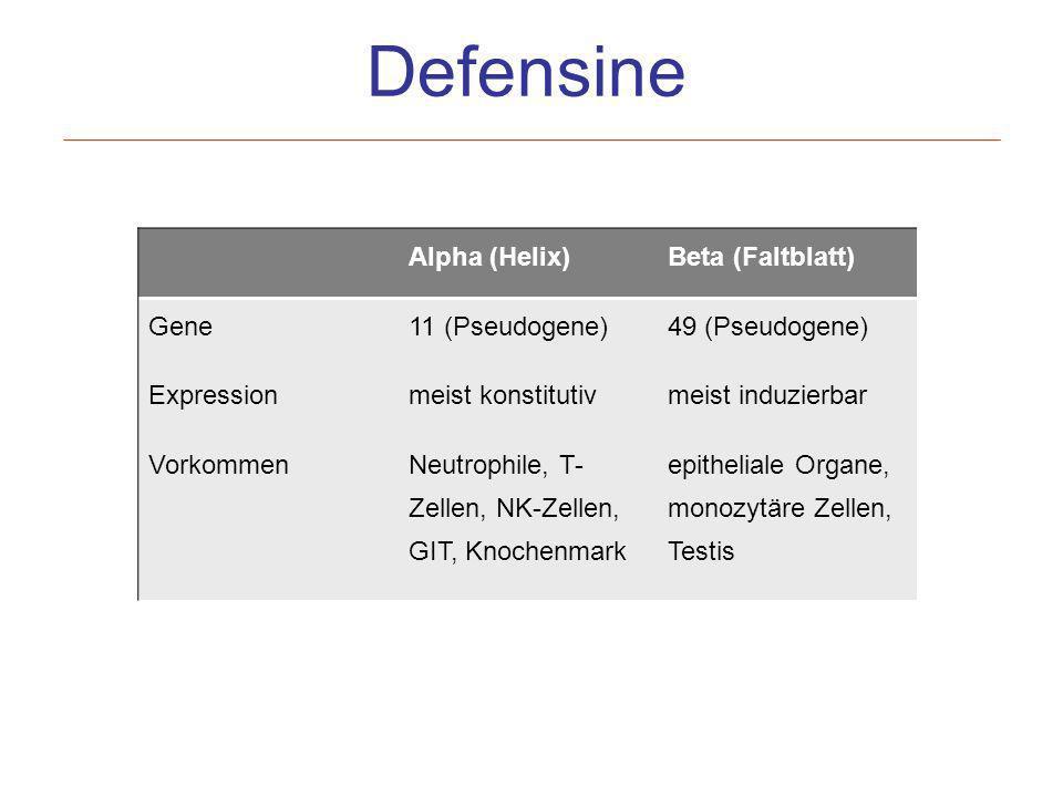 Defensine Alpha (Helix)Beta (Faltblatt) Gene11 (Pseudogene)49 (Pseudogene) Expressionmeist konstitutivmeist induzierbar VorkommenNeutrophile, T- Zelle
