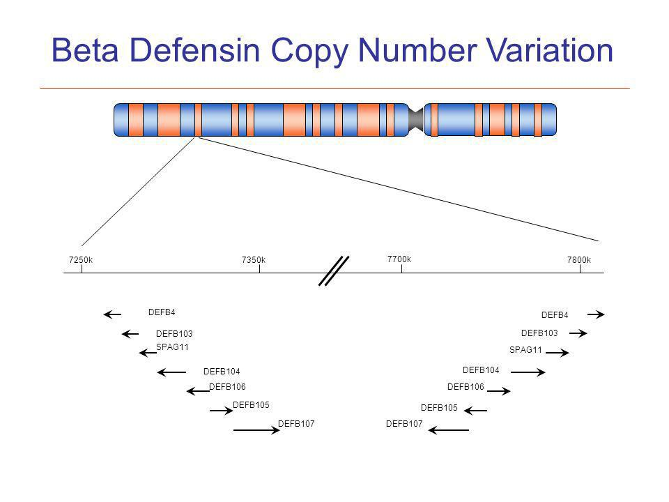 DEFB103 DEFB4 DEFB103 SPAG11 DEFB104 DEFB106 DEFB105 DEFB107 7250k7350k 7700k 7800k Beta Defensin Copy Number Variation