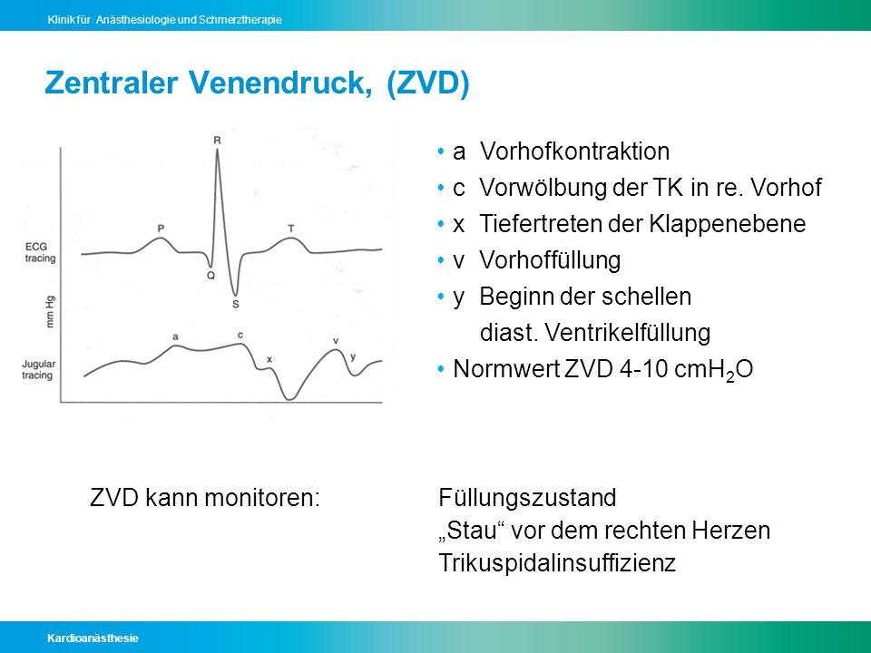 Kardioanästhesie Klinik für Anästhesiologie und Schmerztherapie Zentraler Venendruck, (ZVD) a Vorhofkontraktion c Vorwölbung der TK in re. Vorhof x Ti