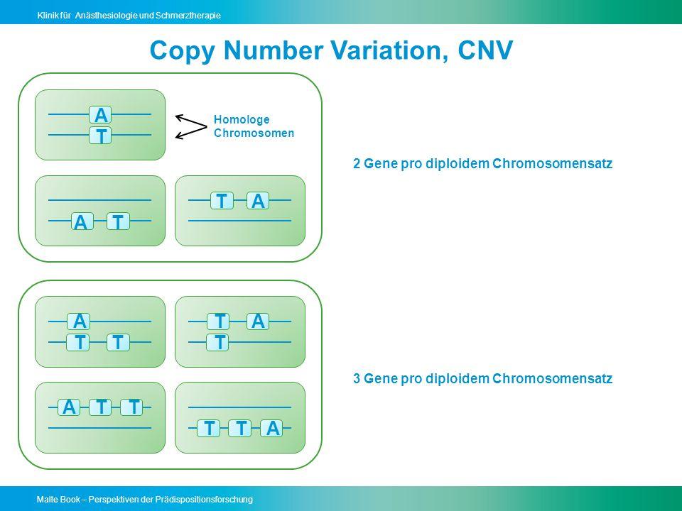 Malte Book – Perspektiven der Prädispositionsforschung Klinik für Anästhesiologie und Schmerztherapie Genomscan DNA Array Referenz DNA auf Chip Markierte Probanden DNA bindet bei Basen-Übereinstimmung -bindet nicht bei Mismatch SNP Analyse Quantität des Bindungssignals CNV Analyse 2 bis 4 Millionen Marker/Chip
