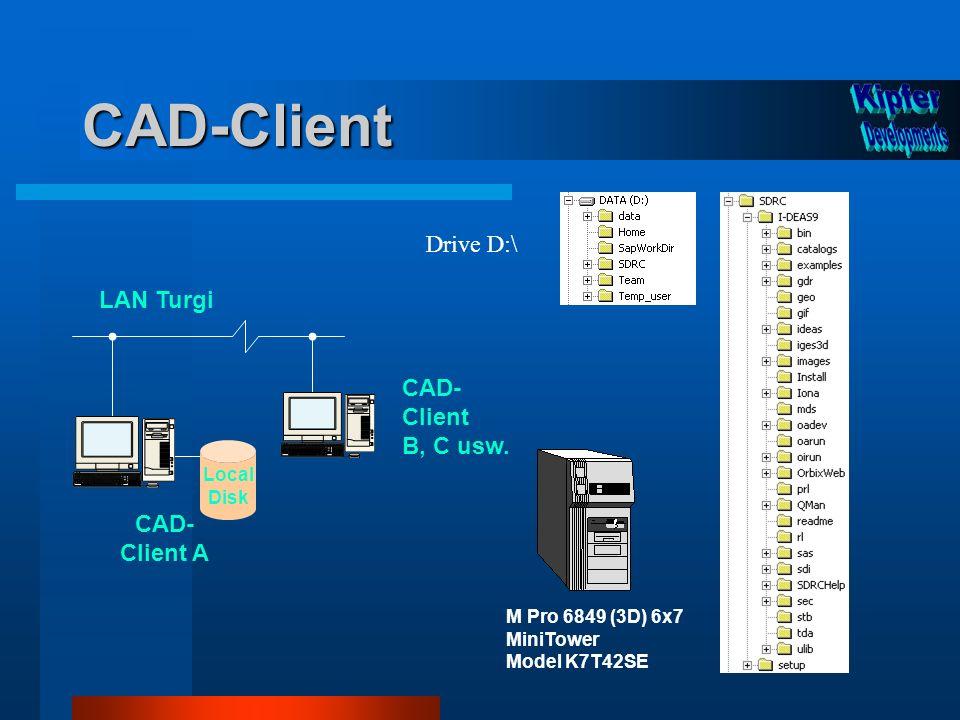 CAD-Client CAD- Client A LAN Turgi Local Disk M Pro 6849 (3D) 6x7 MiniTower Model K7T42SE CAD- Client B, C usw. Drive D:\