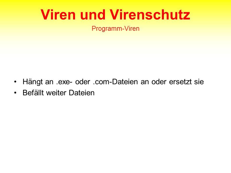 Viren und Virenschutz Programm-Viren Hängt an.exe- oder.com-Dateien an oder ersetzt sie Befällt weiter Dateien