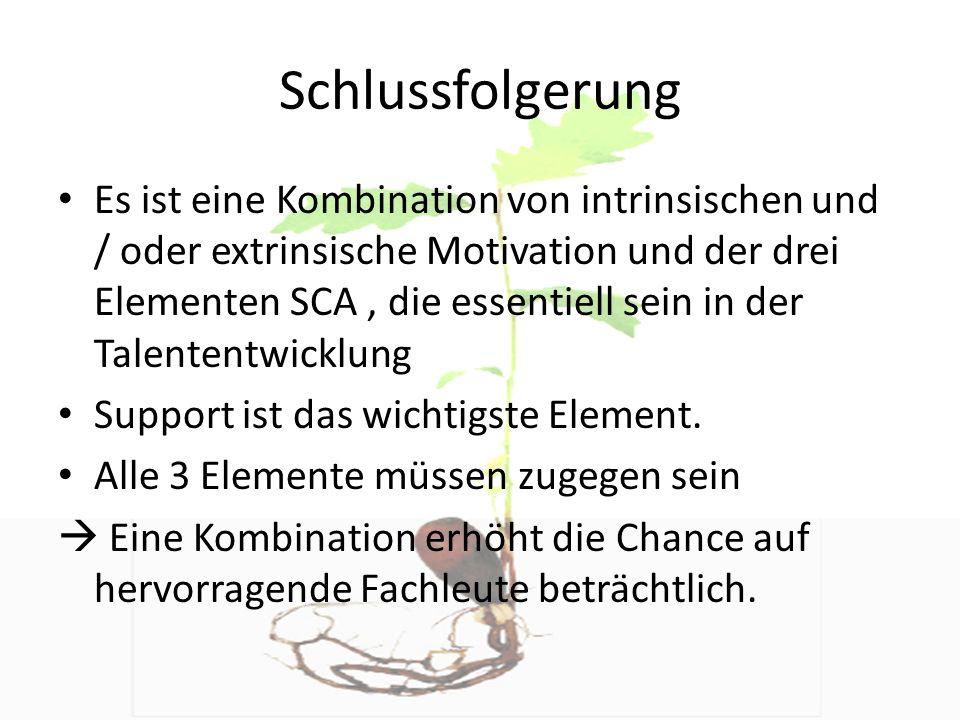 Schlussfolgerung Es ist eine Kombination von intrinsischen und / oder extrinsische Motivation und der drei Elementen SCA, die essentiell sein in der T