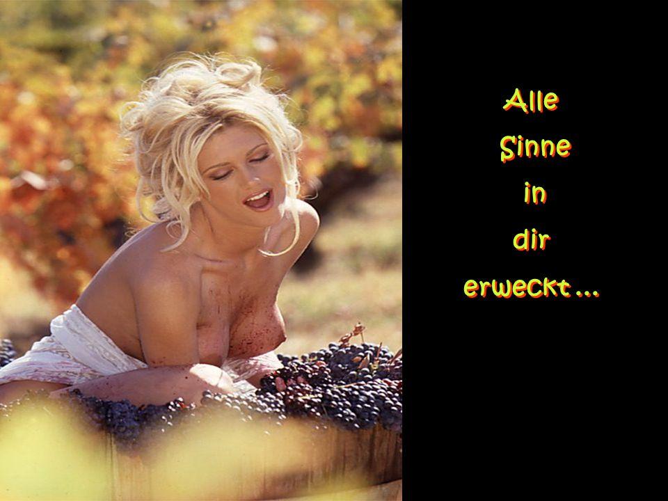 Im Herzen des Wein- berges... Im Herzen des Wein- berges...
