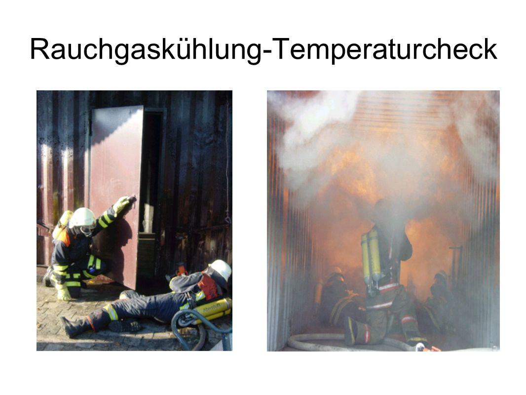Rauchgaskühlung-Temperaturcheck