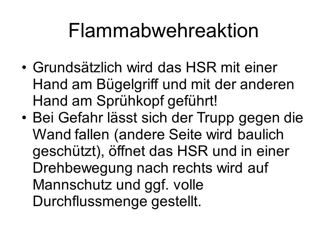 Flammabwehreaktion Grundsätzlich wird das HSR mit einer Hand am Bügelgriff und mit der anderen Hand am Sprühkopf geführt! Bei Gefahr lässt sich der Tr
