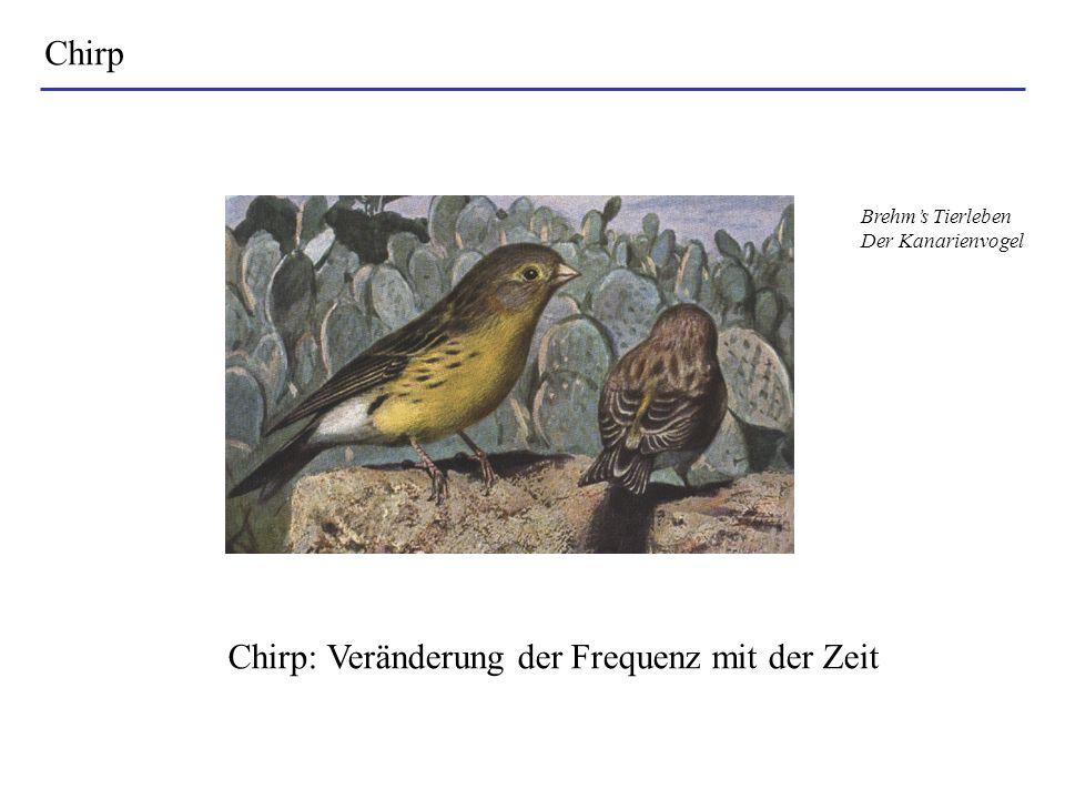 Chirp Chirp: Veränderung der Frequenz mit der Zeit Brehms Tierleben Der Kanarienvogel
