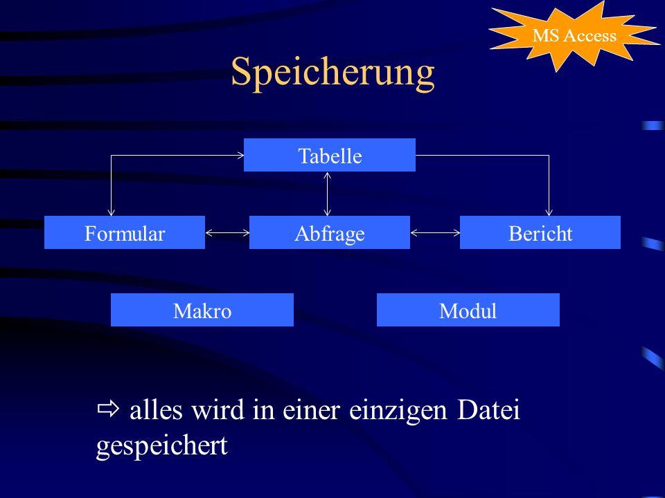 Speicherung MS Access Tabelle FormularAbfrageBericht MakroModul alles wird in einer einzigen Datei gespeichert