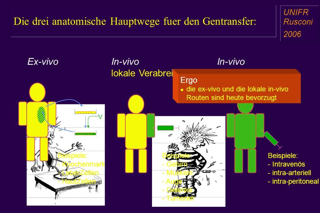 Die drei anatomische Hauptwege fuer den Gentransfer: a aa a aa Ex-vivoIn-vivo lokale Verabreichung In-vivo systemische Verab. V Beispiele: - Knochenma