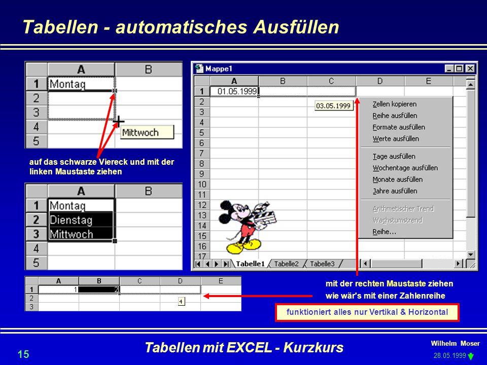 Wilhelm Moser 28.05.1999 Tabellen mit EXCEL - Kurzkurs 15 Tabellen - automatisches Ausfüllen auf das schwarze Viereck und mit der linken Maustaste zie
