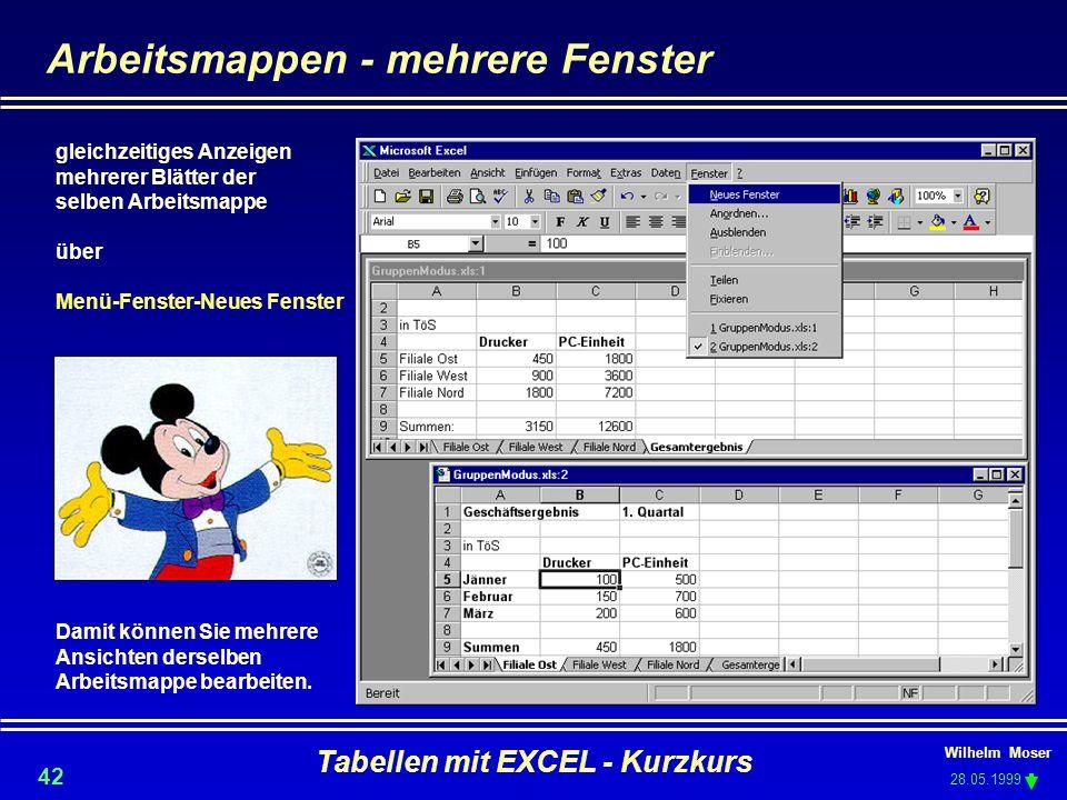 Wilhelm Moser 28.05.1999 Tabellen mit EXCEL - Kurzkurs 42 Arbeitsmappen - mehrere Fenster gleichzeitiges Anzeigen mehrerer Blätter der selben Arbeitsm