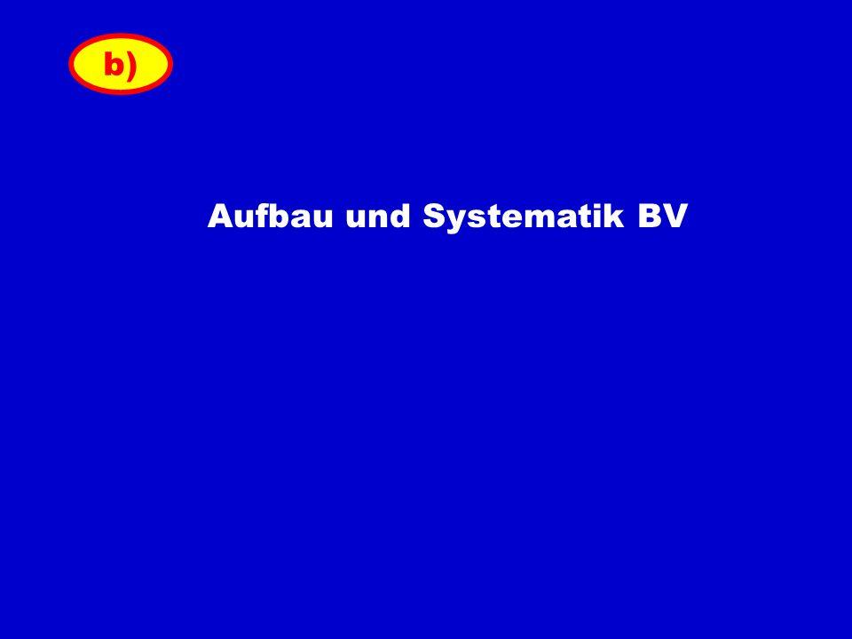 Aufbau und Systematik BV b)
