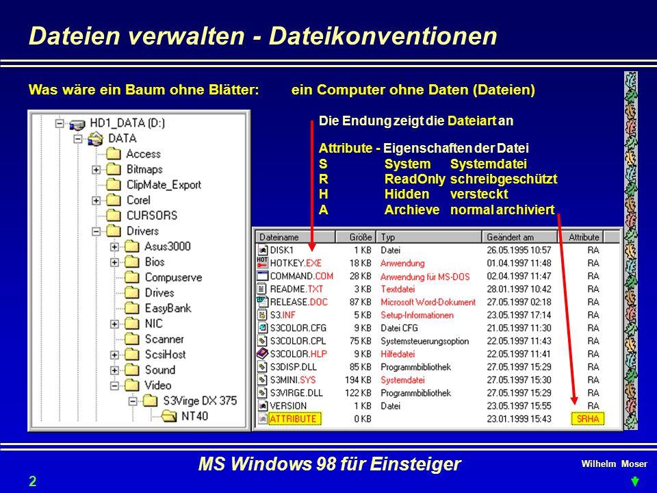 Wilhelm Moser MS Windows 98 für Einsteiger Dateien verwalten - Dateikonventionen Was wäre ein Baum ohne Blätter:ein Computer ohne Daten (Dateien) Die