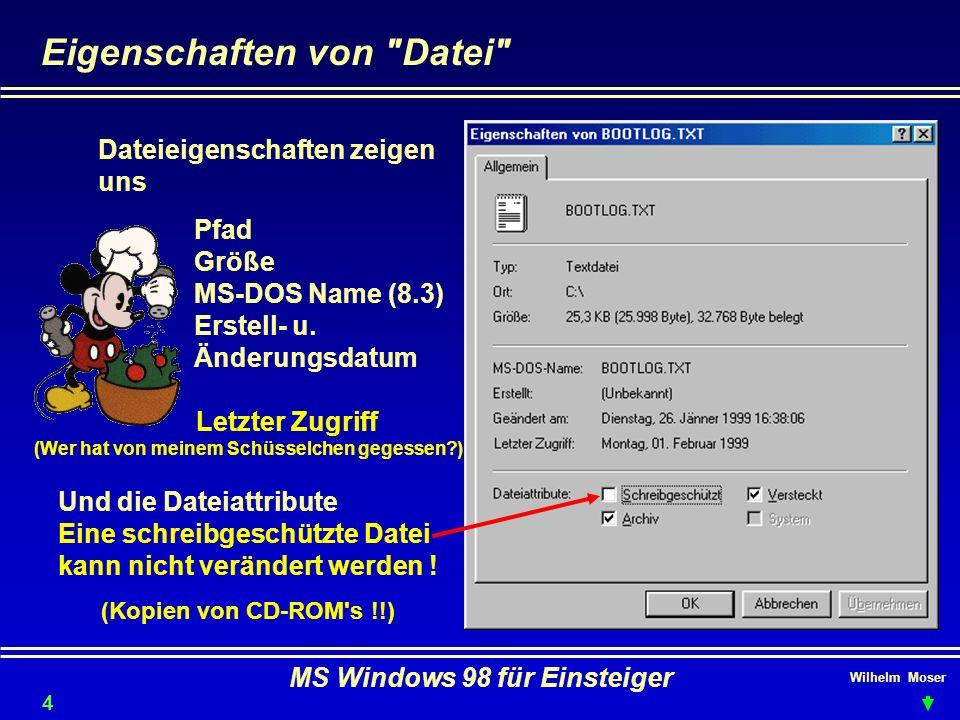 Wilhelm Moser MS Windows 98 für Einsteiger Eigenschaften von