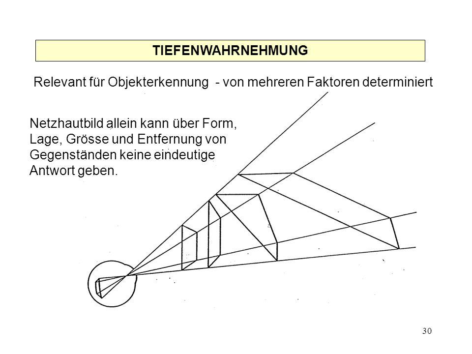 31 Daher: andere Grundlagen der Raumwahrnehmung notwendig.